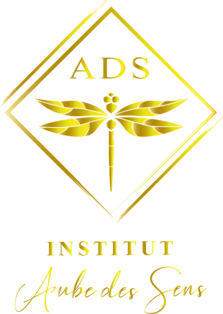 logo or abs sans fond.png