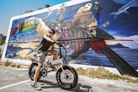 LA Murals & Sierra Folding Electric Bikes