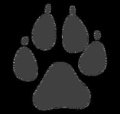 big dog paw print.png