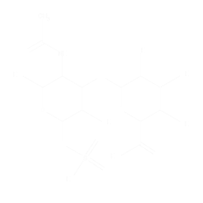 CHONDROITIN 4-SULFATE MOLECULE-WHITE.png
