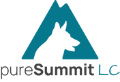 PureSummit LC (icon).png