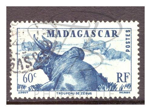 Madagascar n°304