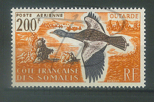 Somalis P.A. n°28 , **