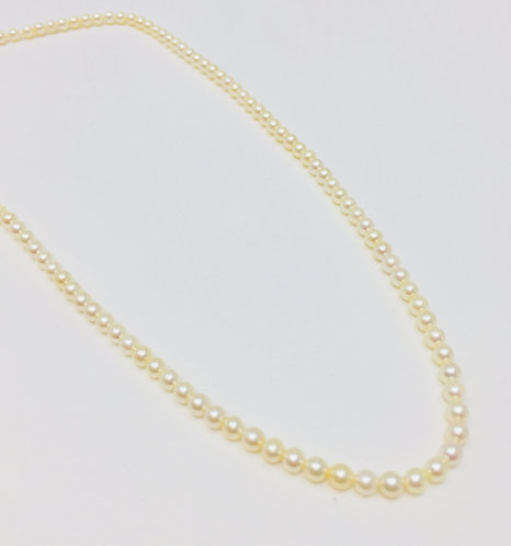 Cultured Pearls 3.5mm, 17 inches.