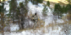 field_avalanche_1.jpg