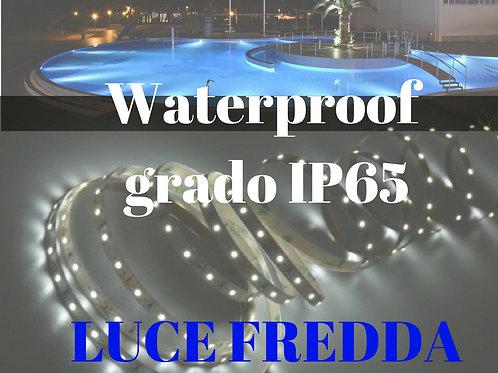 WATERPROOF IP65 5mt striscia a led luce fredda 60 led/mt 12Vdc 4,8W/mt