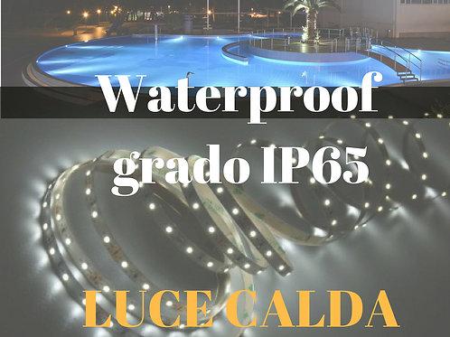 WATERPROOF IP65 5mt striscia a led luce calda 60 led/mt 12Vdc 4,8W/mt