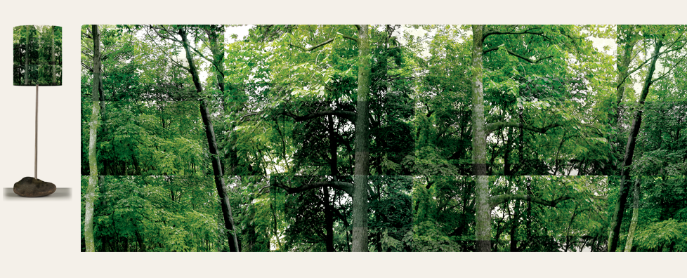 10_Moyenne_arbres+Aplat.png