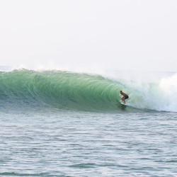 Another one at Barra