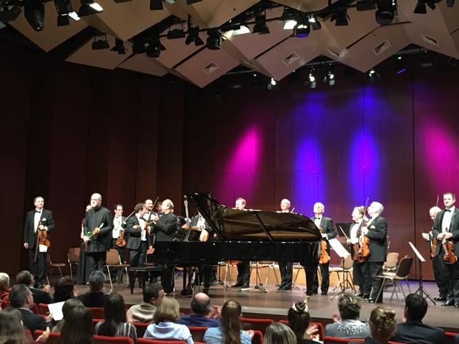 wallisch in komorni orkester franz liszt