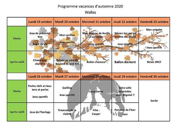 programme automne 2020 wallas.jpg