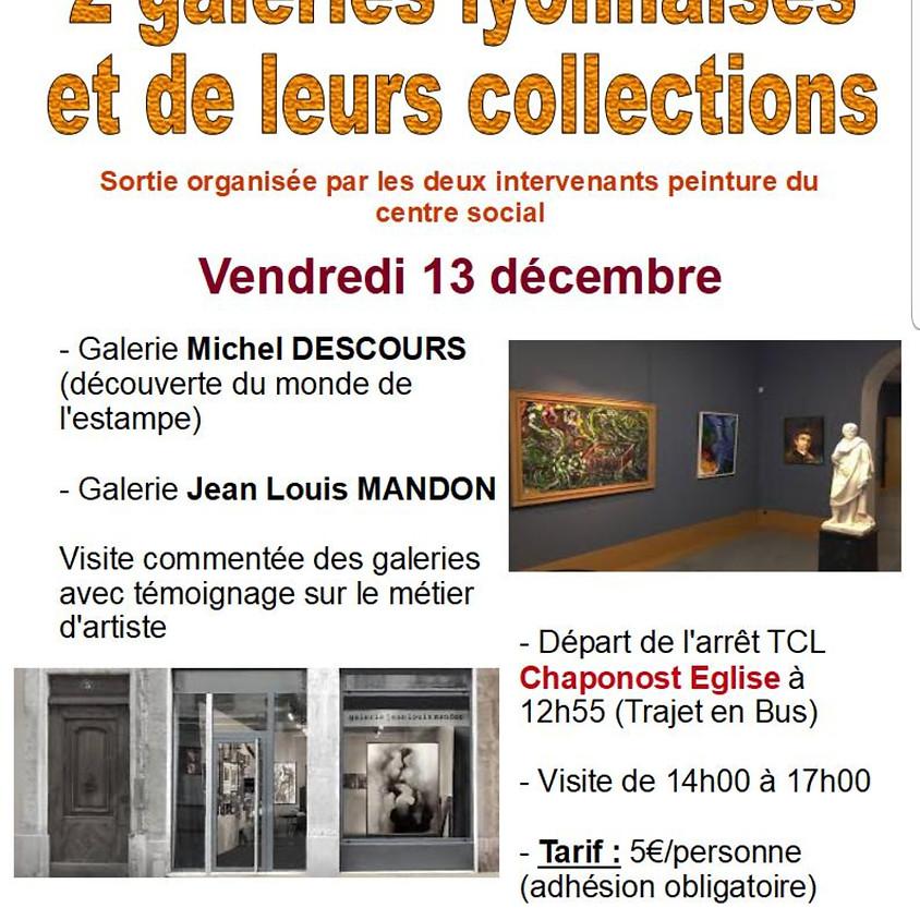 Découverte de  galeries Lyonnaises