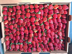 Strawberries pretty