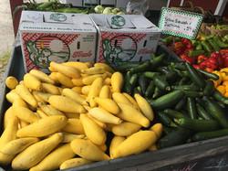 Zucchini and yellowsquash