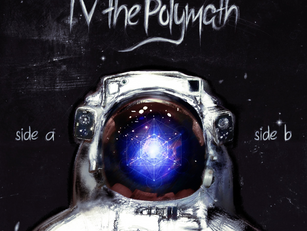 Day 13:  The Loneliness of the Mid-Career Polymath - An appeal to my kind!