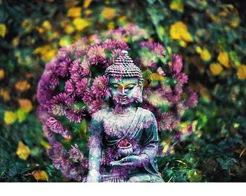 fleurs rose et boudha en pierre