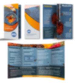 ASTA Updated Brochure_concept-1.jpg