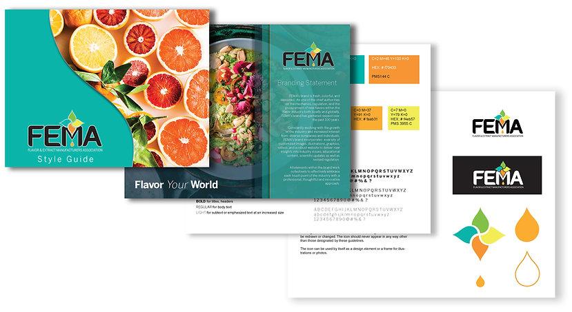 FEMA-Style-Guide-Concept.jpg