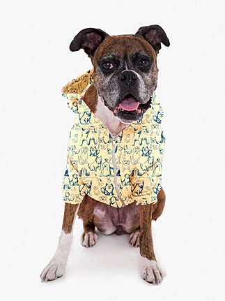 dog jacket template2.jpg