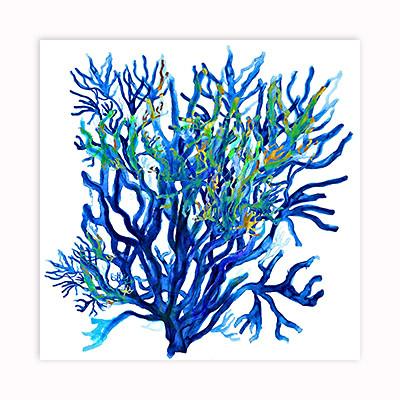 Deep Blue watercolor coral