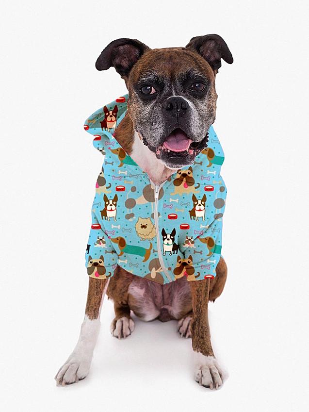 dog jacket template-Blue.jpg