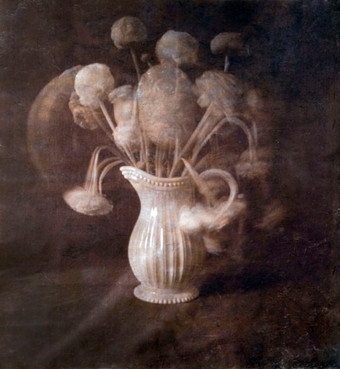 Renounqulrous  van dykebrown print on hanji 65*60cm 2008