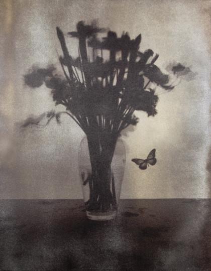 Anemone van dykebrown print 35*27cm  2011