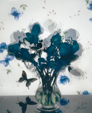 Blue rose inkjet print 35*30 2010