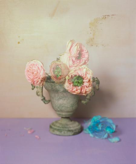 Fade out grace  Inkjet pigment print 60*50cm 2017