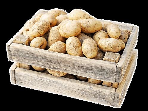 Patata Novella Siciliana - Box 20kg