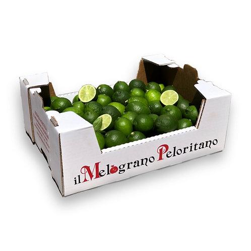 Lime La Vallette - Box 5kg