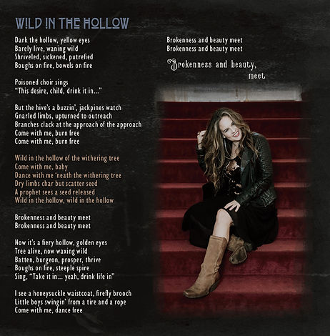 Wild in the Hollow booklet cover.jpg