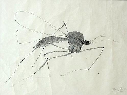Le moustique 2