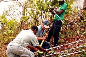 haiti-crisis-relief_1508765559_600x400_edited.jpg