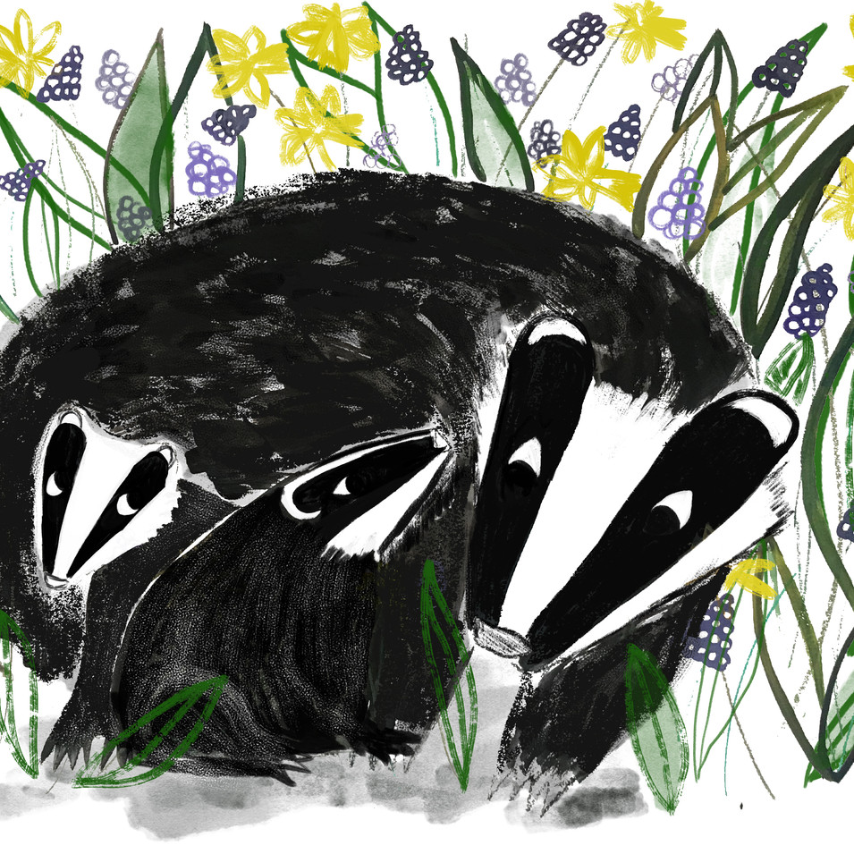 Spring Badgers