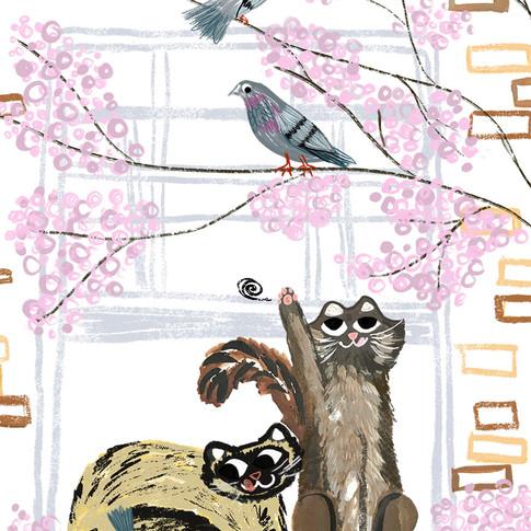 Cats & Blossom