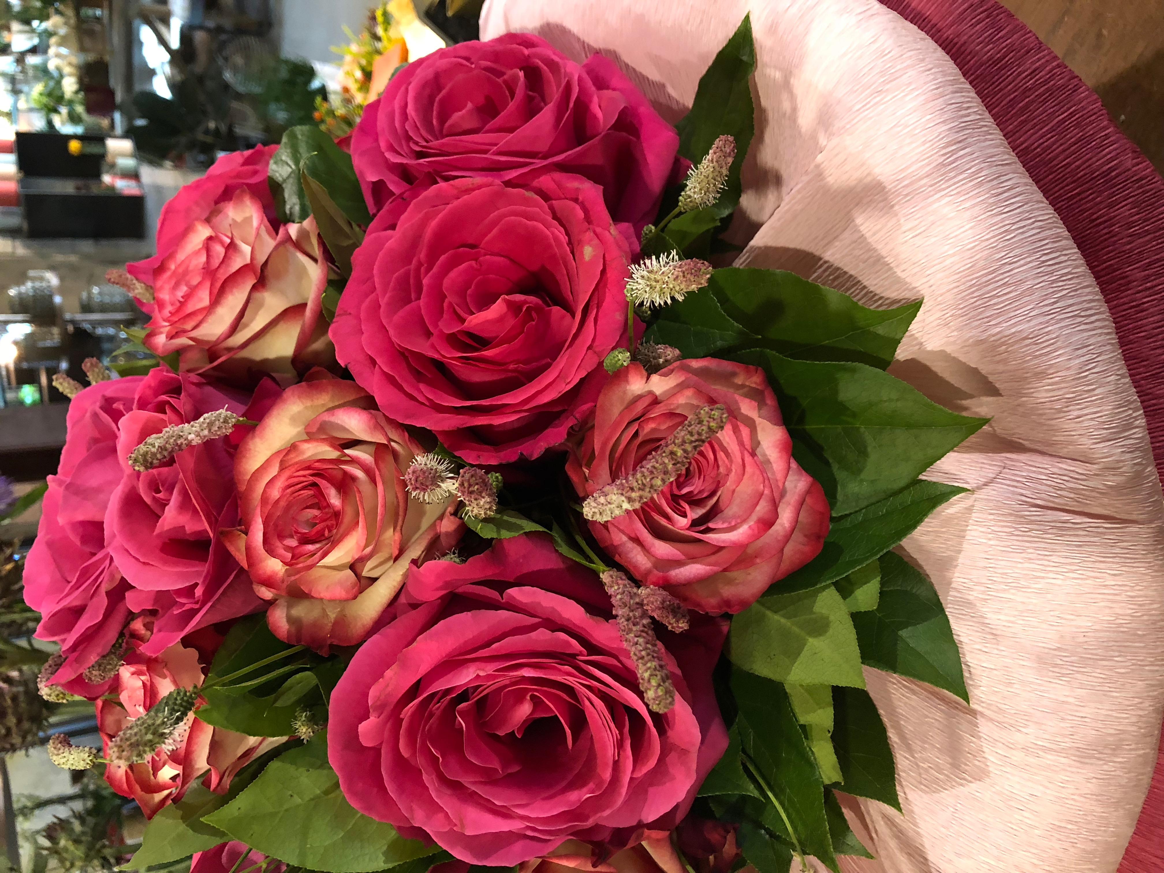 Ecuador rozen