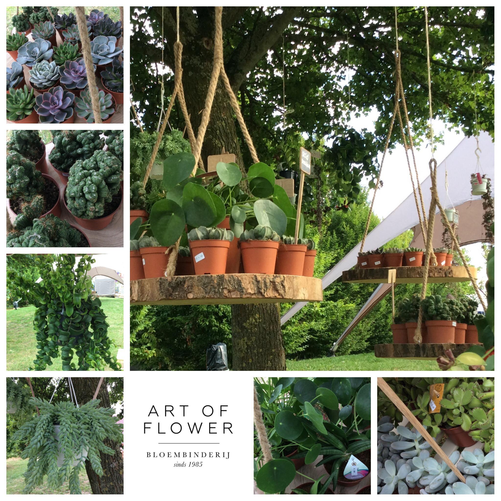 De plantencaravan