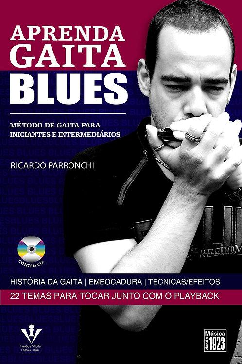 APRENDA GAITA BLUES RICARDO PARRONCHI