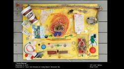 WT Beach Art Final Presnetation.018