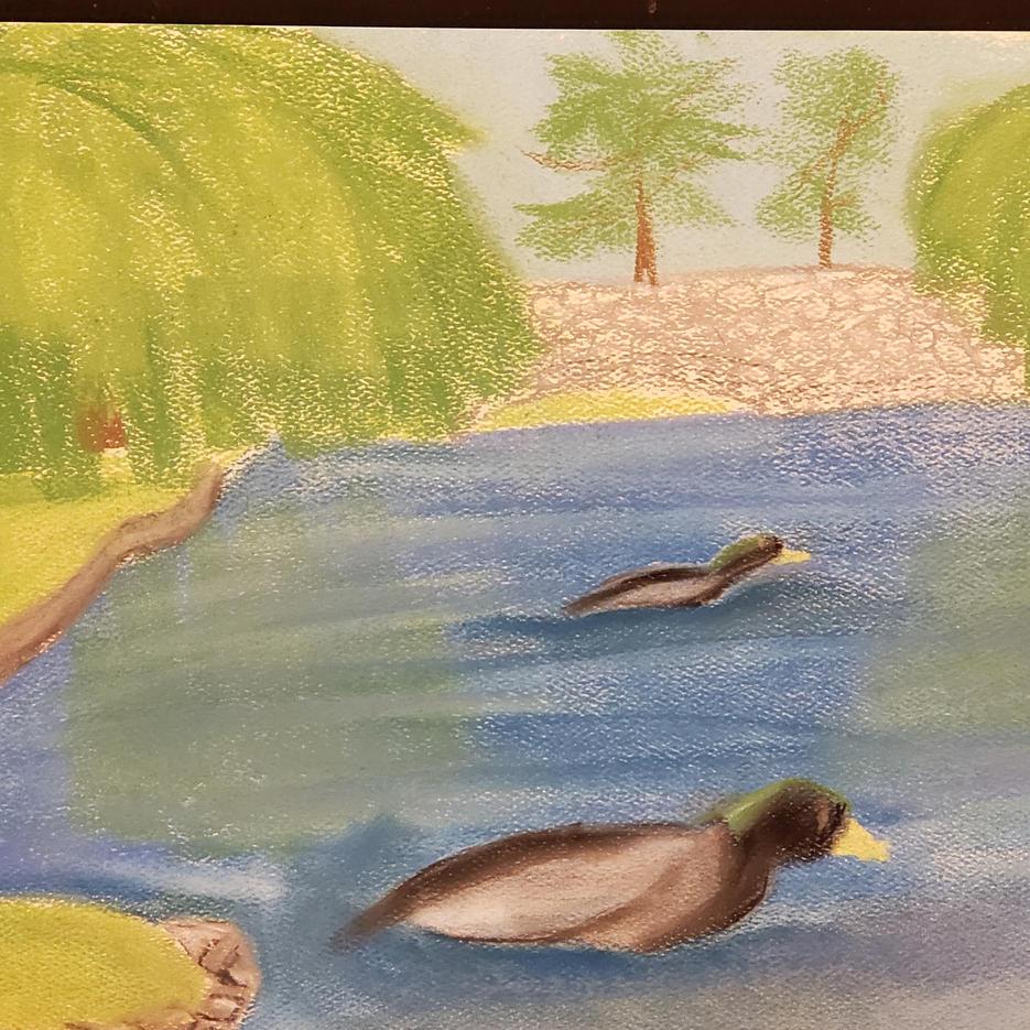 Ducks on a Pond | Pastel | Sadie, Age 12
