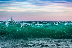 Bluefish in the Waves