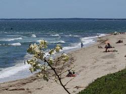 Town Beach View