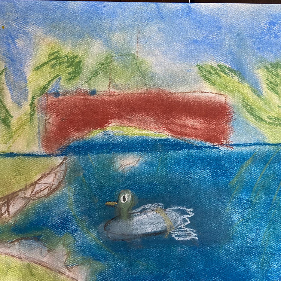 Ducks on a Pond | Pastel | Eva, Age 7