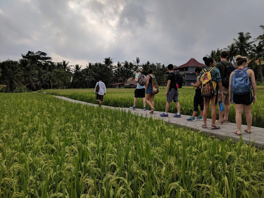 Bali's Strong Culture and Community by Donna McNair
