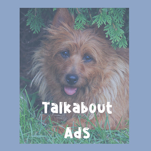 Talkabout Ads
