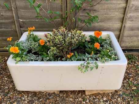 The Secrets of Container Planting