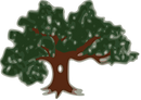tree transparent.png