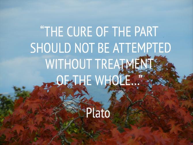 Plato's quote