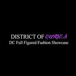 district-of-curves-logo.jpg